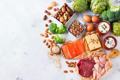microbiote, nutrition, fibres, protéines, acides gras à chaîne courte
